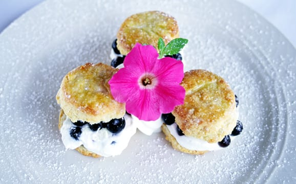 Blueberry Shortcakes - Asheville Chef Michael's Catering